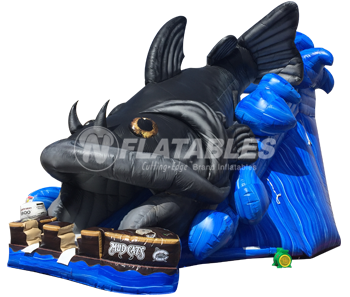 Inflatable Catfish Slide